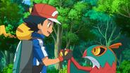 Ash and Hawlucha