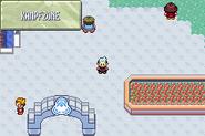 Pokemon Smaragd - Kampfzone