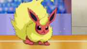 Lucy flareon