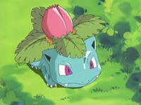 Ivysaur de Daisy