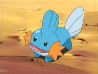 Mudkip de Yusuke