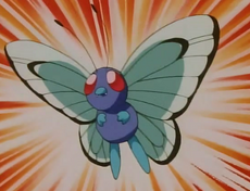 Butterfree de Daisy