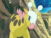 Girafarig de Daisy