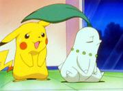 Chikorita&Pikachu