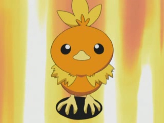File:May Torchic.png