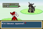 Pokemon Dark Rising Screenshot 01