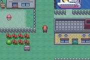 Pokemon Venotide Version Pallet town