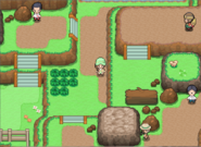 Pokemon Ethereal Gates Screenshot 03