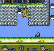 Pokemon Adventure Screenshot 03
