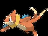 Buizel (Pokémon)