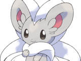 Cinccino (Pokémon)