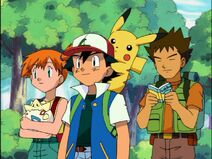 Ash and Friends
