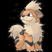 Pokemon Growlithe