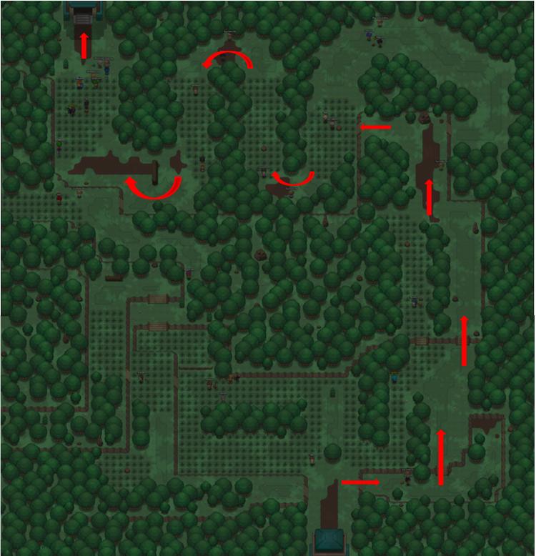 Viridian forest final