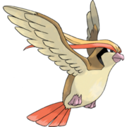 Pokemon Pidgeot