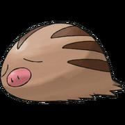 Pokemon Swinub
