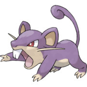Pokemon Rattata