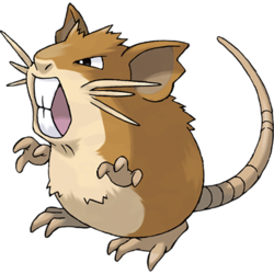 File:Pokemon Raticate.png