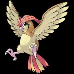 Pokemon Pidgeotto