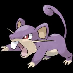 019 Rattata Pokemon Revolution Online Wiki Fandom