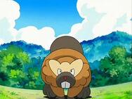 Avery'sBibarel