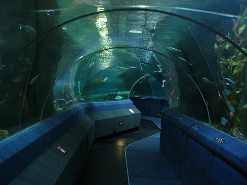 File:Beldum Station Underground Tunnel.jpg