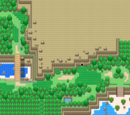 Route 13