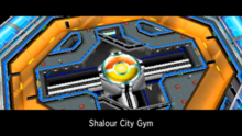 Shalour City Gym Interior