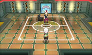 Omega Ruby Alpha Sapphire Sidney's Room