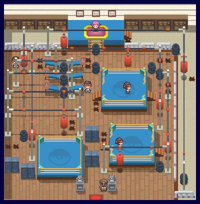 Sinnoh Gyms   Pokémon Wiki   FANDOM powered by Wikia