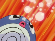 Misty Poliwag Bubble