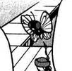 File:Wilton Butterfree.png