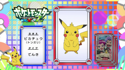 Pokémon Quiz XY115
