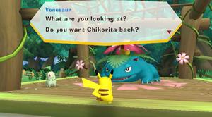 Park Pikachu and Venusaur