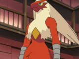May's Blaziken (anime)