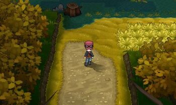 Route 14