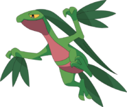 253Grovyle AG anime