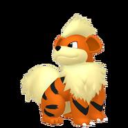 058Growlithe Pokémon HOME