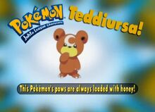 Teddiursa- Who's That Pokémon