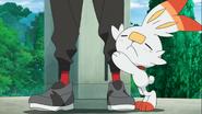 Scorbunny hugging Goh