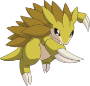 028Sandslash AG anime