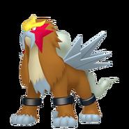 244Entei Pokémon HOME