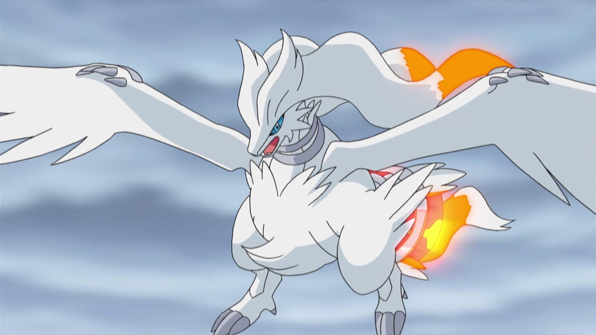 how to get zekrom in pokemon white