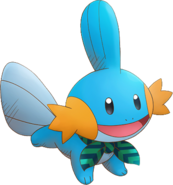 258Mudkip Pokémon Super Mystery Dungeon