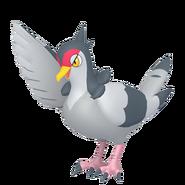 520Tranquill Pokémon HOME