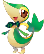 495Snivy Pokémon Super Mystery Dungeon