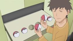 Brock Poké Balls PO