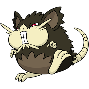 Raticate | Pokémon Wiki | FANDOM powered by Wikia