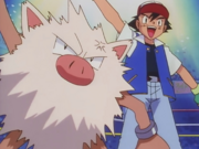 Ash and Primeape