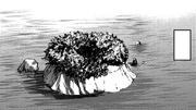 포케스페 남쪽의 외딴섬